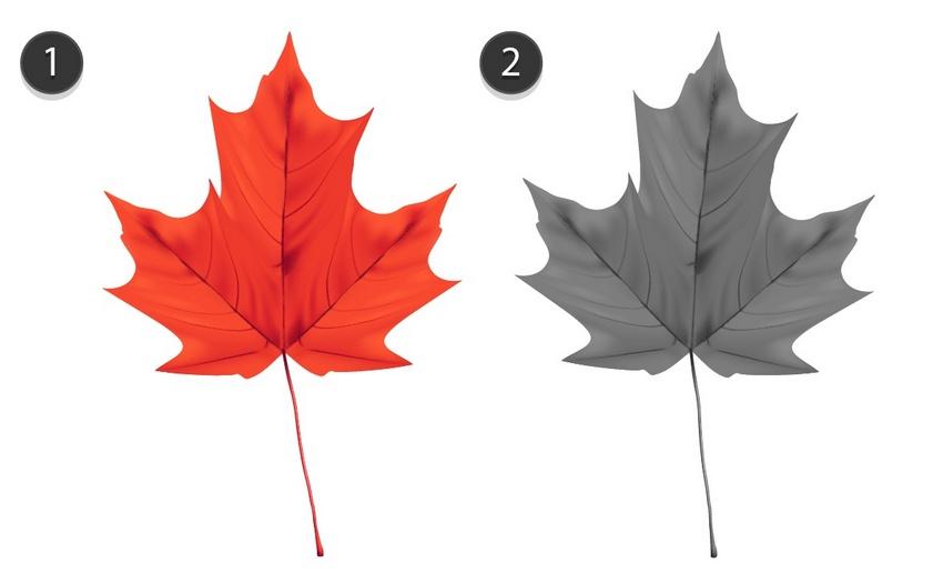 Красочные кленовые листья с помощью Mesh Tool